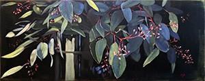 eukalyptus_wp